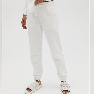 Aritzia: TNA Boyfriend Sweatpant (Ice Grey)